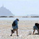 Vissen te voet Normandië