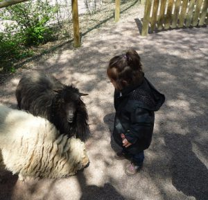 Zoo-champrepus-normandie kinderactiviteit