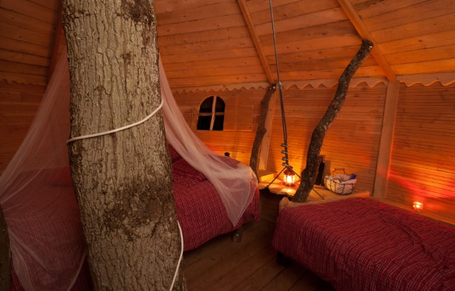 Romantic stay for 2 in a tree house