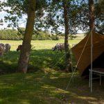 Standaard Campingplaats – Baai van de Mont Saint Michel Normandië